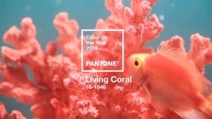 Az év színe a living coral